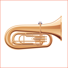 Instrumentos Musicais para Casamento em BH 6