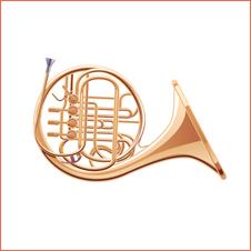 Instrumentos Musicais para Casamento em BH 7