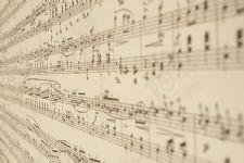 Música para Casamento BH - D' Claretto 4
