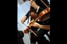 Música para Casamento BH - D' Claretto 8