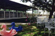 Salão de Festas no Castelo - Espaço Le Jardim 5